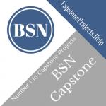 BSN Capstone Project