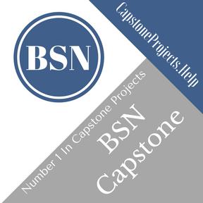 BSN Capstone Project Help