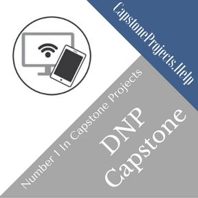 DNP Capstone Project Help