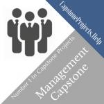 Management Capstone Project