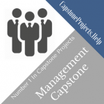 Management Capstone Project