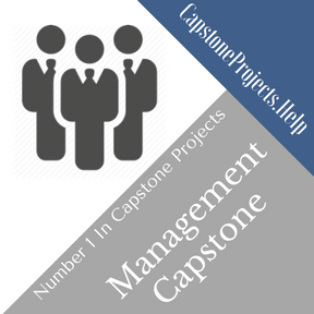 Management Capstone Project Help